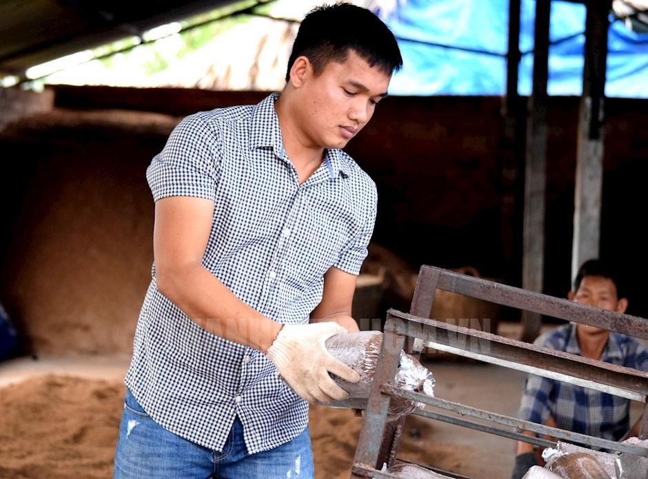 Bùi Minh Thắng đóng gói các phôi nấm
